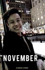 November |C.D| by -badlandss-