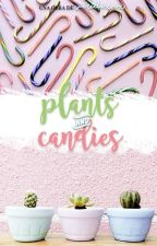 Plants & candies ✧ YoonMin+2Seok/JinHope by AGUSTDS