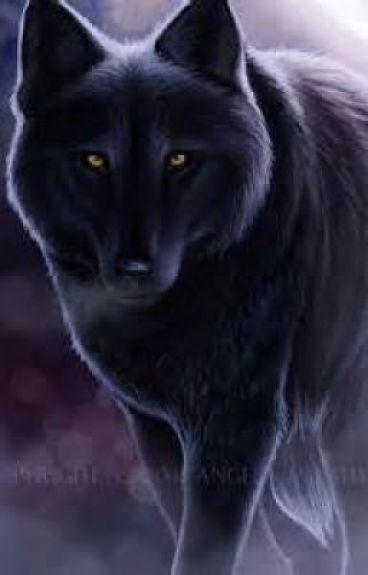My evil alpha.