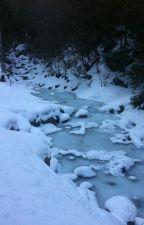 Légende d'hiver - TERMINE by Caromelu15