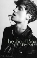 The Bad Boy of Mine by dumeismycopilot