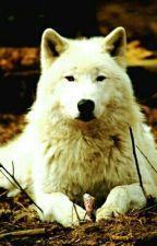 Minha vida como uma loba (continuação)  by Joycielen14