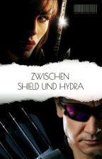 Zwischen Shield und Hydra   》Clint Barton《 by Lautschlautsch
