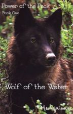 Power of the Pack Book 1: Wolf of the Water by Mahgninnuc