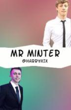 Mr Minter -Minishaw by HarryXIX