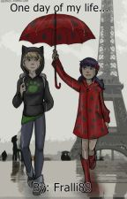 One day of my life... - Miraculous Ladybug FF by Fralli88