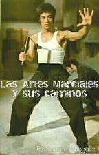 Las Artes marciales y sus caminos by JuanquiVazquez