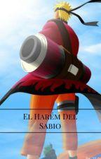 El Harém Del Sabio by UchihaBardo99