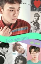 Los Machos de  Exo by Ani_Mar_D