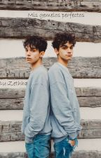 Mis Gemelos Perfectos   Lucas And Marcus by Zethha
