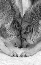 Seducido por gemelos (l.s) Adaptada. by AnnaLarryHernandez2