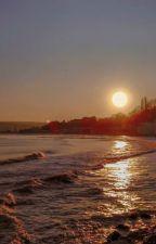 lotus sun by beachflower-