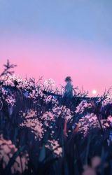 Xả ảnh Anime by AkiraNguyen6