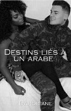 Destins liés à un arabe  by _La_Timaal