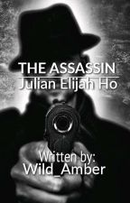 The Assassin by Wild_Amber