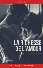 La richesse de l'amour. Tome 3 by LauraMourette