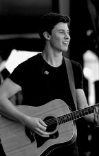 A Shawn Mendes Love Story by picturesaremylife02