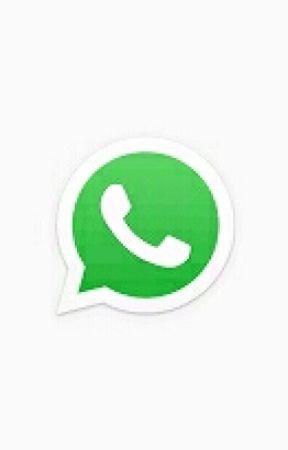 Whatsapp Status Pferde Statusse Wattpad