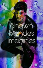 Shawn Mendes Imagines by -rosetattoo-