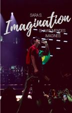 Imagination - Shawn Mendes Imagines by GeekEvergirl