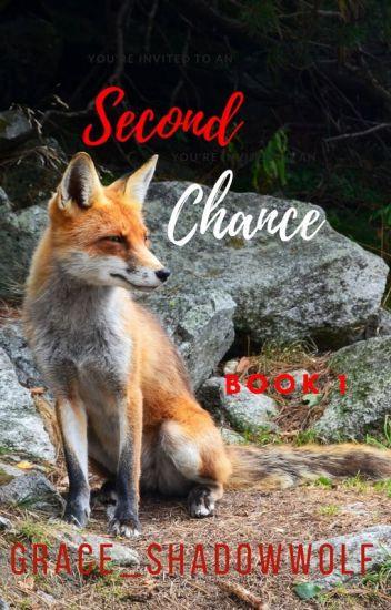Second Chance (boyxboy/mpreg)
