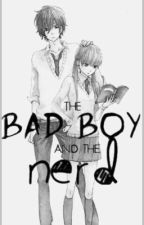 Zenix x Reader *The Bad Boy And The Nerd* by EllaTheShipper