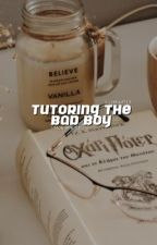 tutoring the bad boy → s.minter ✓ by Illuminatex