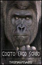 cogito ergo scribo by ThomasPesaro