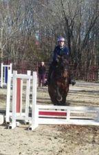 Equestrian Relatables by equestriantori