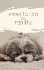 Expectation vs Reality by baaechu