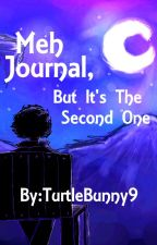 Meh Journal, But It's The Second One by TurtleBunny9