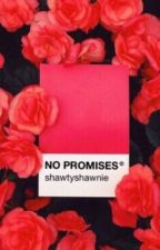 No Promises // S.M by ShawtyShawnie