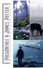 Pregúntale a James Potter by CelestialBreathe