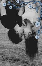 Aż do końca || Grzmotomocni Fanficiton ||  by MrsValiente
