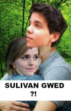 SULIVAN GWED ?! (Tome 1 et 2) by ManonModd