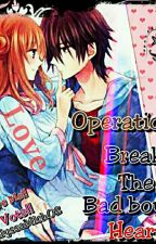 Operation: Break The Bad Boy's Heart (On Going) by alyssamich02
