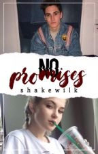 No Promises || S.W by shakewilk