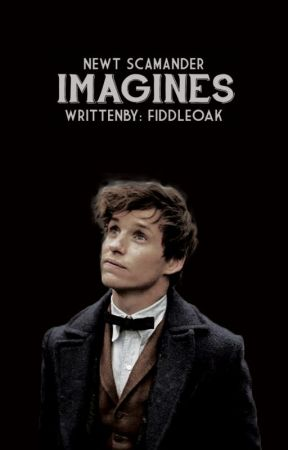 Newt Scamander Imagines - The Night Ride - Wattpad