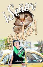 ¡Señor gato! | Yoonmin. by susy1599