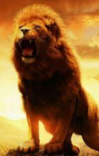 La guerra dei leoni by KikiGraceEny