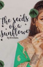 The Seeds of a Sunflower  by Noretakes