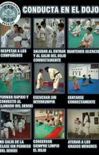 mi vida=karate by ileeeamores
