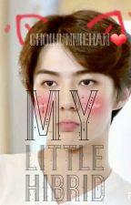 My Little Hibrid ||HanHun-HunHan|| by ChoiHunnieHan