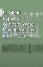 La MOld Experts company Water Damage service in Los Angeles by lamoldexperts