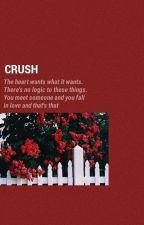 |textin'|  crush - jjk + you by 4D_Land
