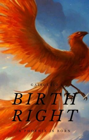 Birthright: A Phoenix is Born by GaisceKid23