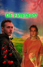 de Friesers~Textingbook by Roomijsje1