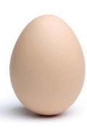 a dozen egg by handmedownrobes