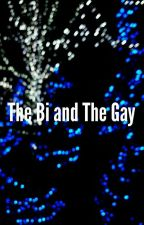 The Bi and The Gay by 221bgayykerstreet