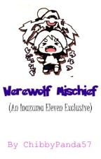 Werewolf Mischief (An Inazuma Eleven Exclusive) by ChibbyPanda57